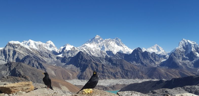 Top Three Best Trekking Destinations in Nepal